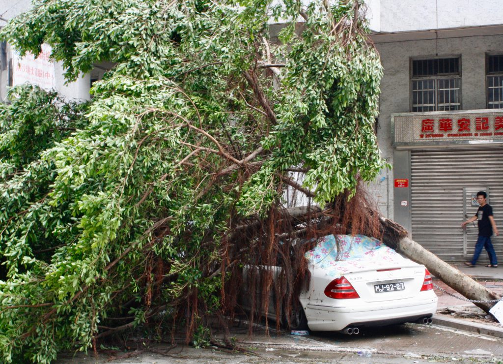 Macau | Tax repayment scheme for typhoon-damaged vehicles approved ...